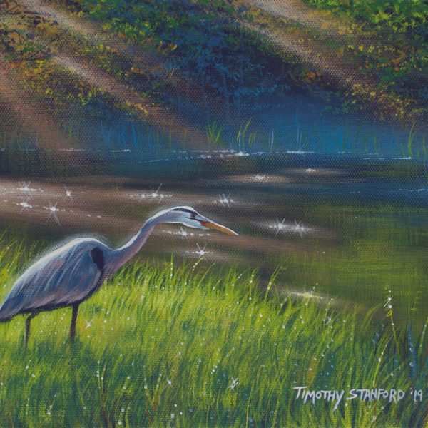 Acrylic wildlife painting of a heron standing on the bank of the Delaware Canal with sun rays shining on the water and mist.