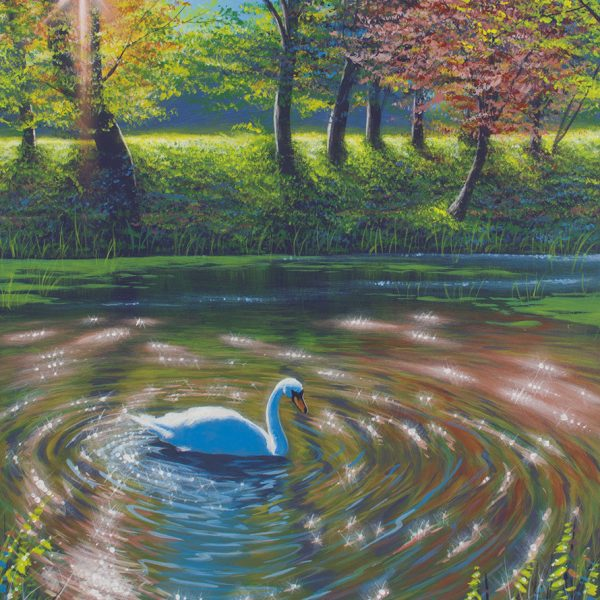 Acrylic wildlife painting of a swan basking in the sun on the Delaware canal during spring.