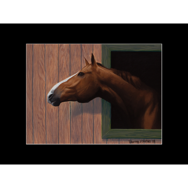 "Fine art matted print of Timothy Stanford's original acrylic painting ""Nosing Around"""