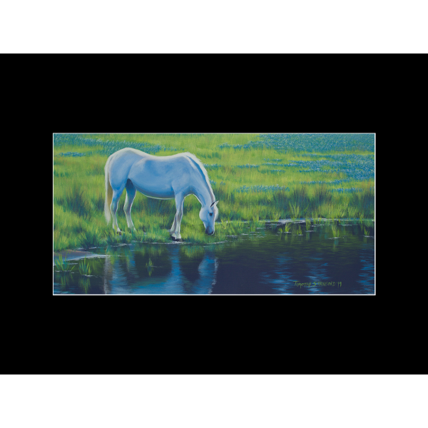 "Fine art matted print of Timothy Stanford's original acrylic painting ""Quenched"""