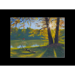 "Fine art matted print of Timothy Stanford's original acrylic painting ""Cardinal Morning"""