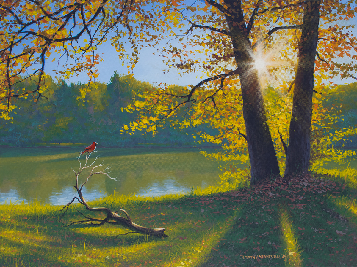 Acrylic landscape painting of a sunlit tree and next to a lake with a cardinal poised on a branch.