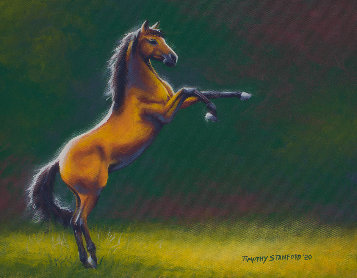Acrylic wildlife painting of a rearing bay horse against a green background.