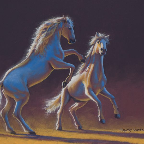 Acrylic wildlife painting of two white horses fighting each other.