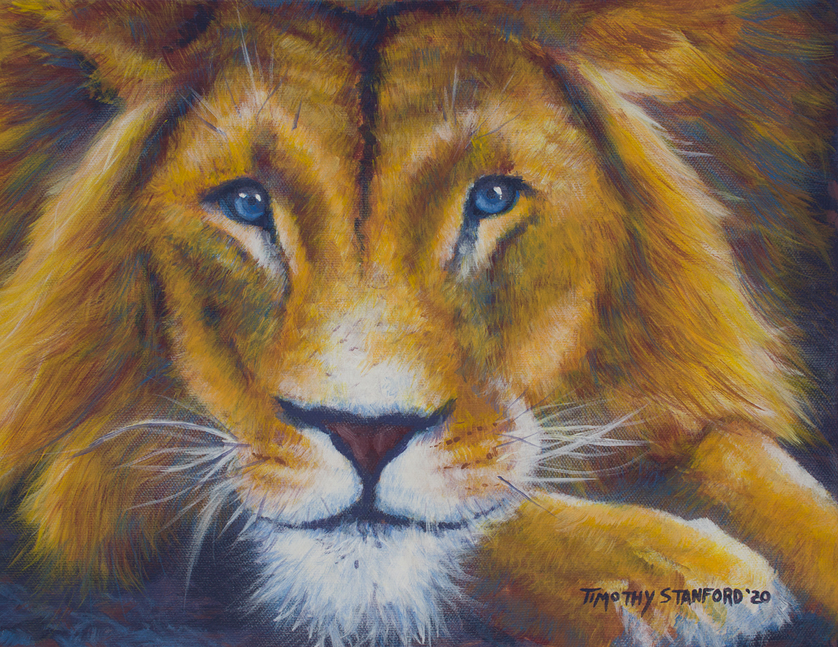 Acrylic wildlife painting of a blue-eyed lion's face and paw.