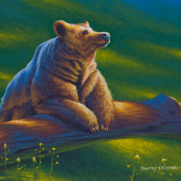 Acrylic wildlife painting of bear resting on a log in a sunlit meadow.