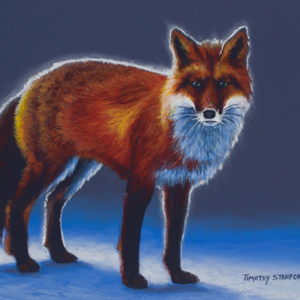 Acrylic wildlife painting of red fox in the snow.
