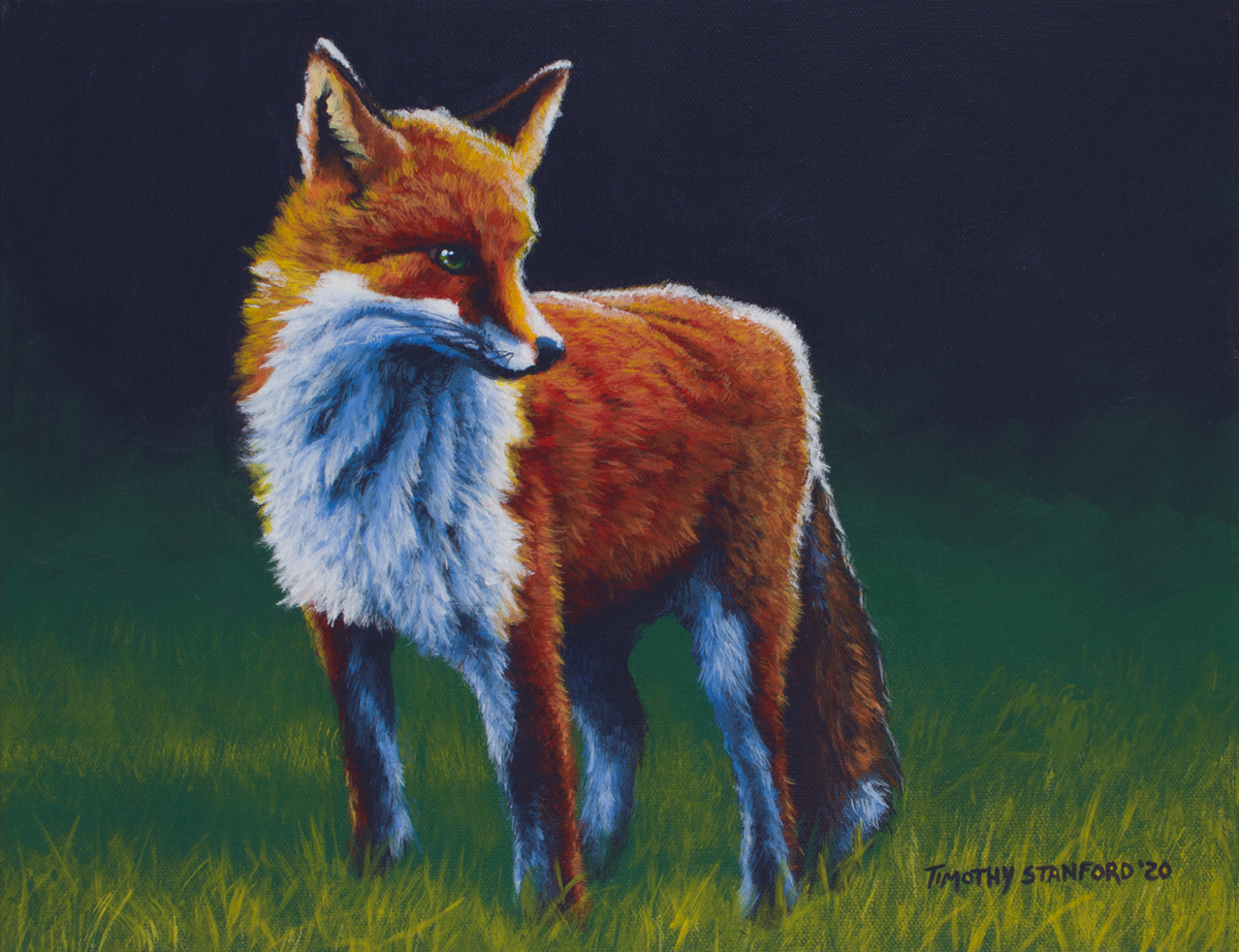 Acrylic wildlife painting of red fox in green grass.