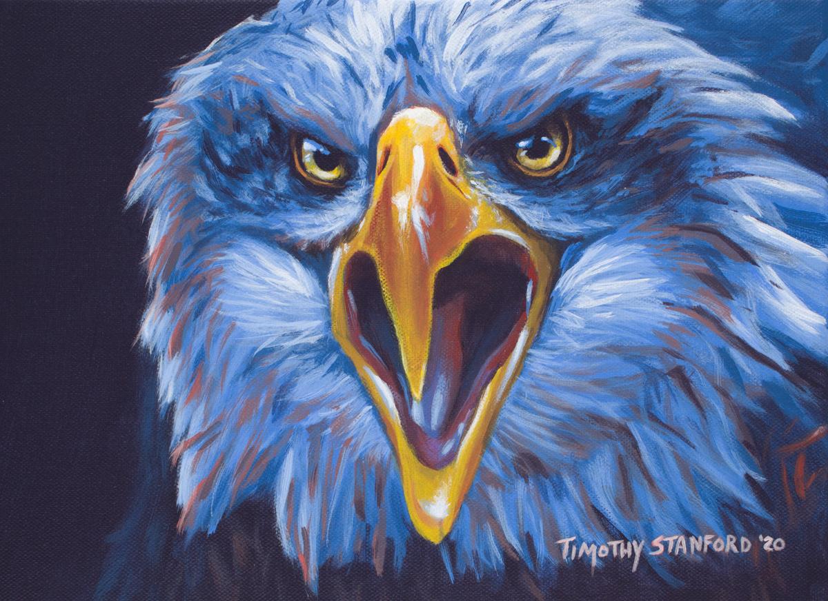 Acrylic wildlife painting of screeching bald eagle