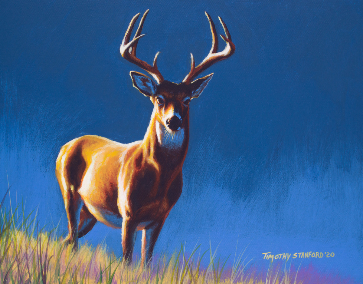Acrylic wildlife painting of a buck