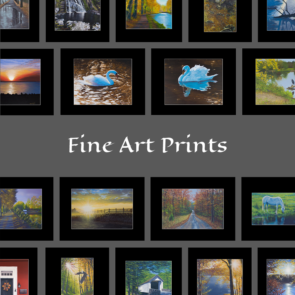 Fine Art Prints by Timothy Stanford
