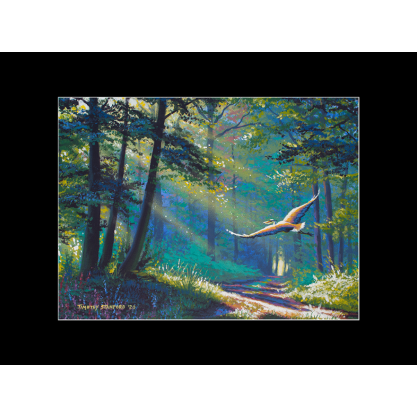 "Fine art matted print of Timothy Stanford's original acrylic painting ""Into the Light"""