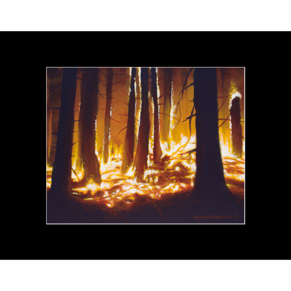 "Fine art matted print of Timothy Stanford's original acrylic painting ""Ablaze"""