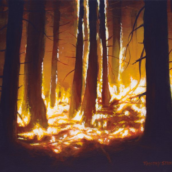 Acrylic landscape painting of a forest fire