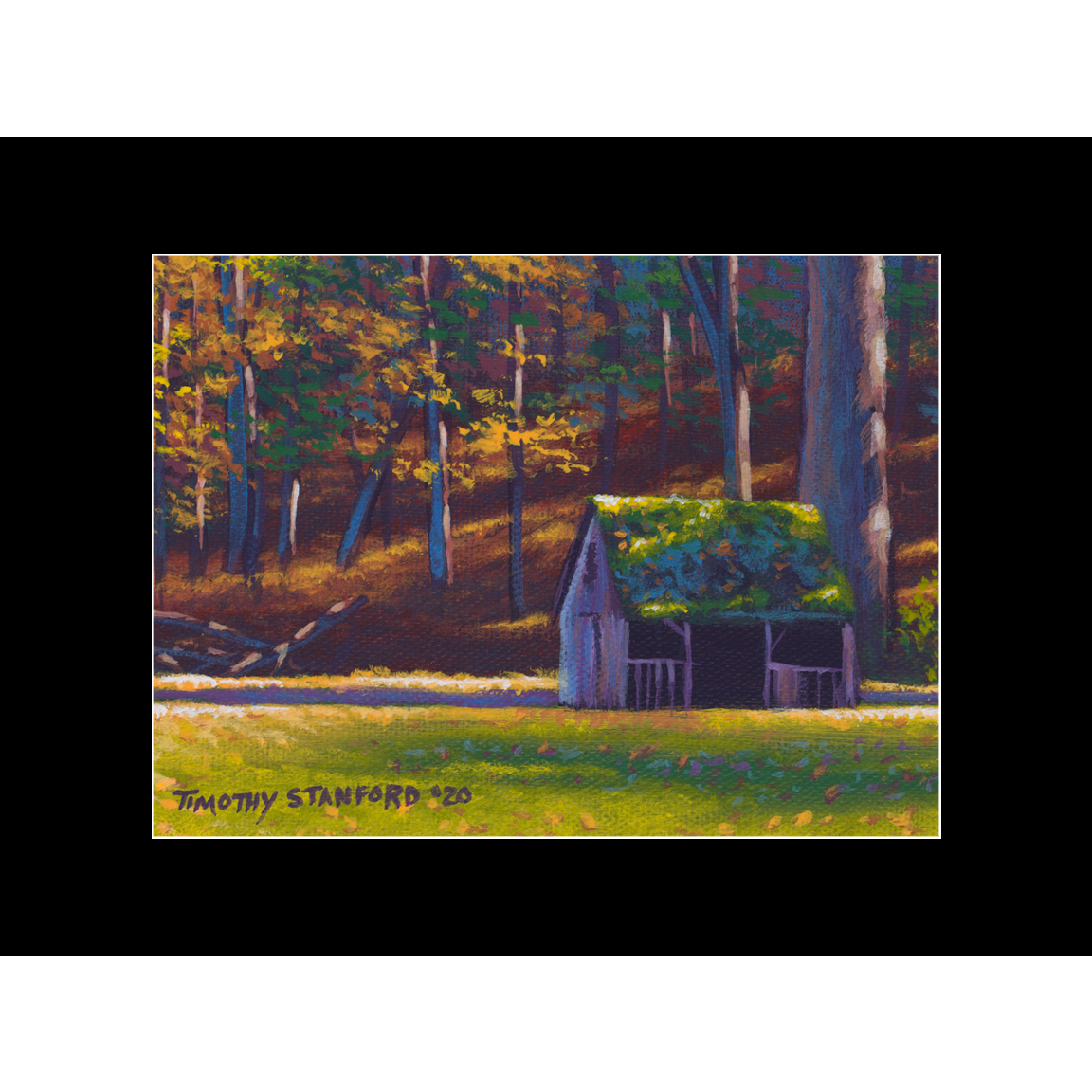 """Fine art matted print of Timothy Stanford's original acrylic painting """"Old Sheep Shed"""""""
