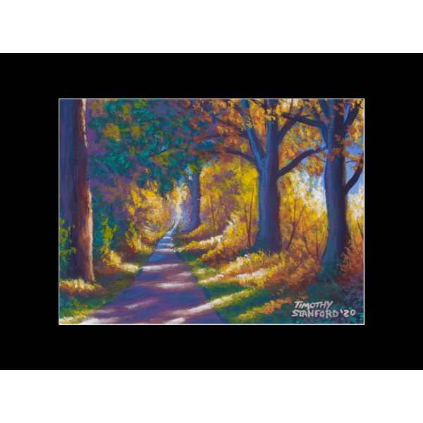 """Fine art matted print of Timothy Stanford's original acrylic painting """"Fall at Tyler Park"""""""