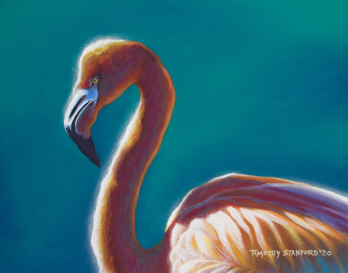 Acrylic wildlife painting of a flamingo