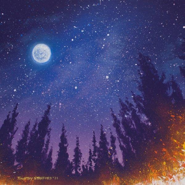 Acrylic landscape painting of a starry night sky