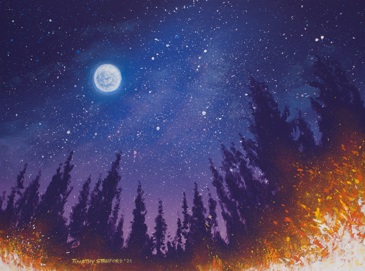 Acrylic landscape painting of a starry night sky