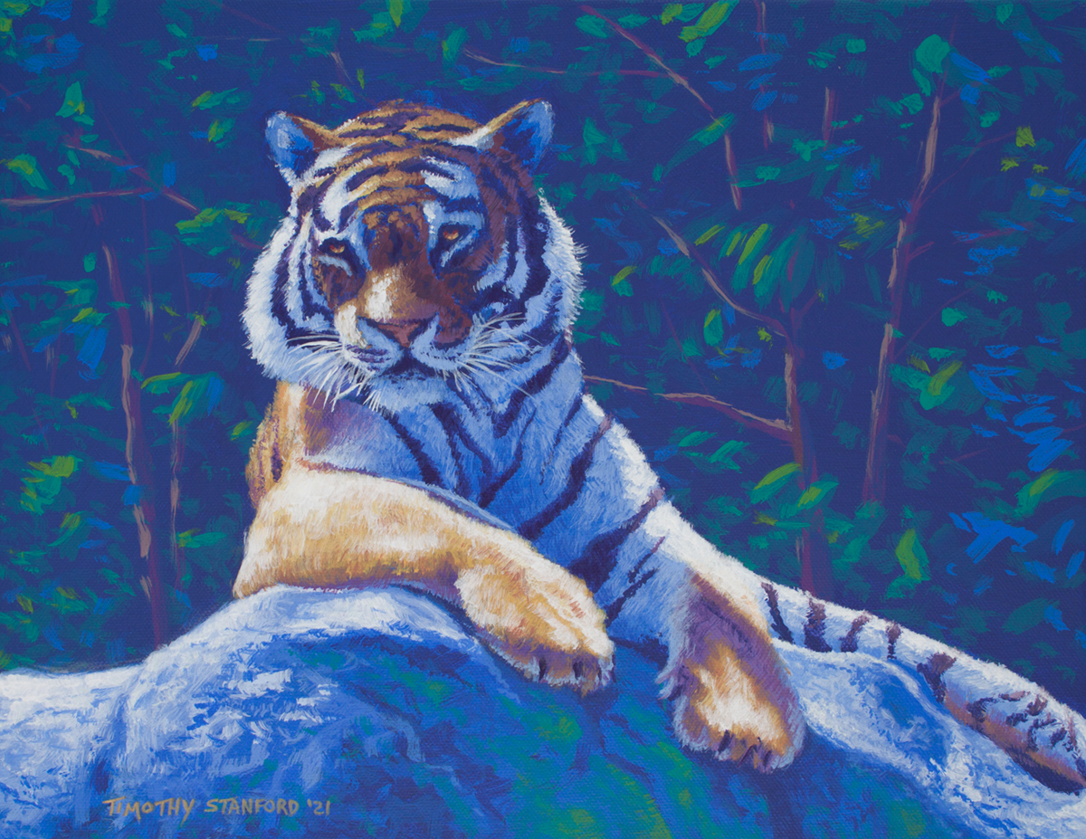 Acrylic wildlife painting of a tiger laying on a rock