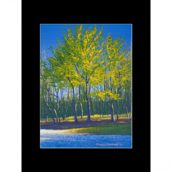 """Fine art matted print of Timothy Stanford's original acrylic painting """"Oklahoma Spring"""""""