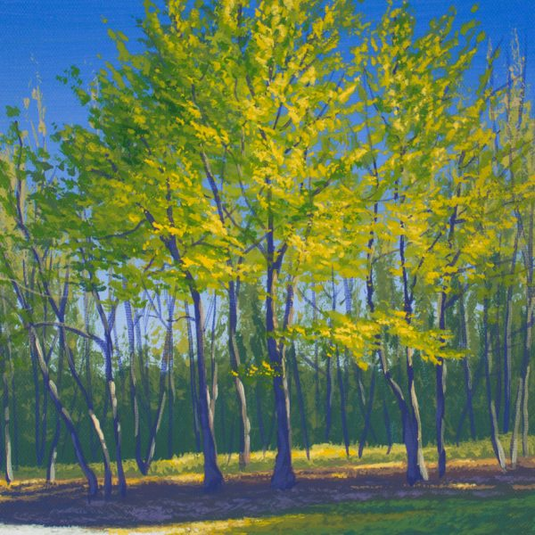 Acrylic landscape painting of green budding trees in spring