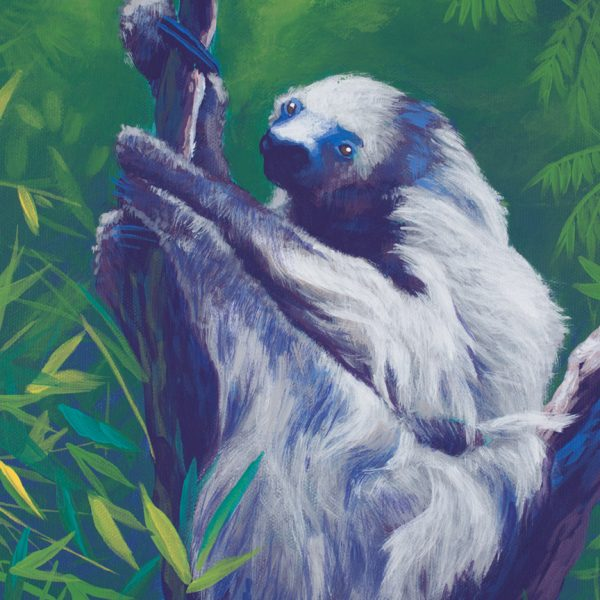 Acrylic wildlife painting of a sloth in a tree