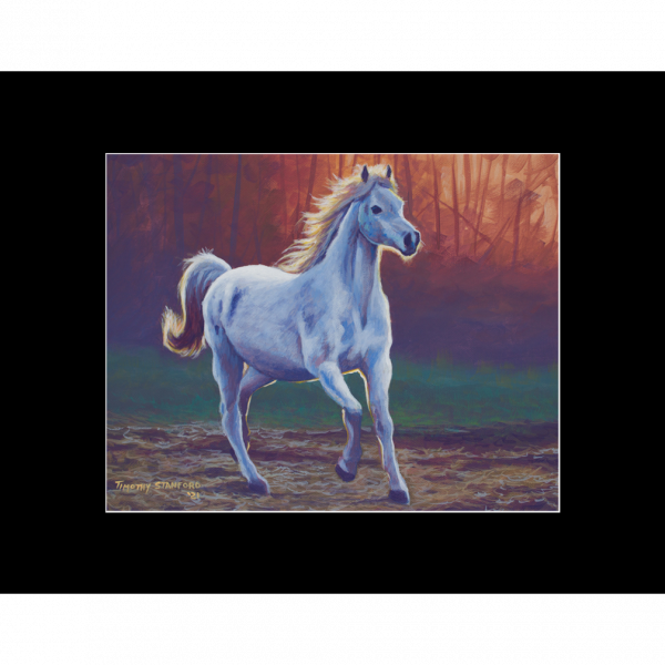 """Fine art matted print of Timothy Stanford's original acrylic painting """"Free"""""""