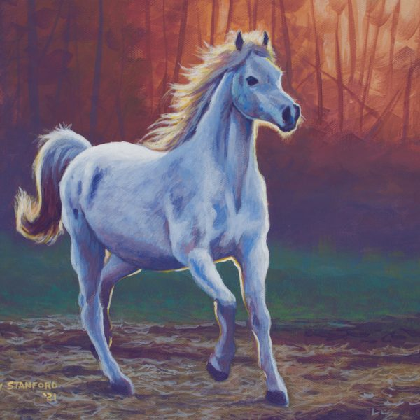 Acrylic wildlife painting of a white horse running through a field
