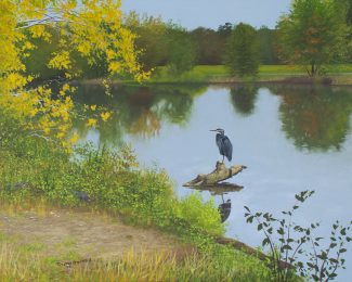 Acrylic painting of a heron standing on a log in the lake at Washington Crossing.